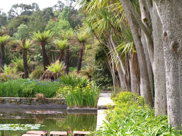 Logan Botanic Garden Scotland